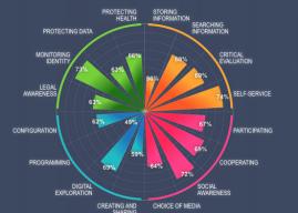 The Digital Competency Wheel