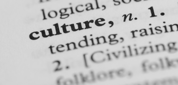 The word culture in a dictionary