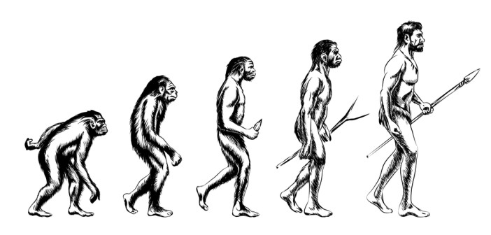 Human evolution. Monkey and australopithecus, neanderthal and animal, illustration