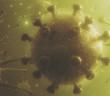 Coronavirus 2019 - ncov flu infection -- 3D illustration